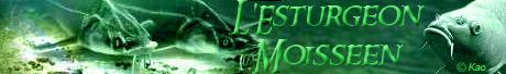 http://lesturgeonmoisseen.free.fr/images/bannieres/lesturgeon_moisseen_banniere.jpg